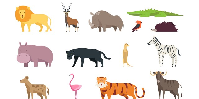 Image du test À quel animal ressemblez-vous le plus ?
