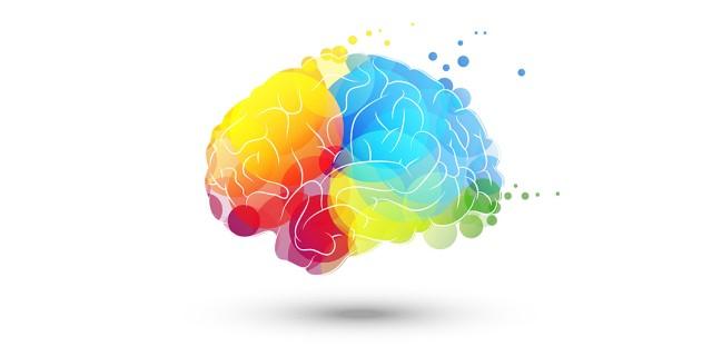Image du test Quelle est votre forme d'intelligence ?