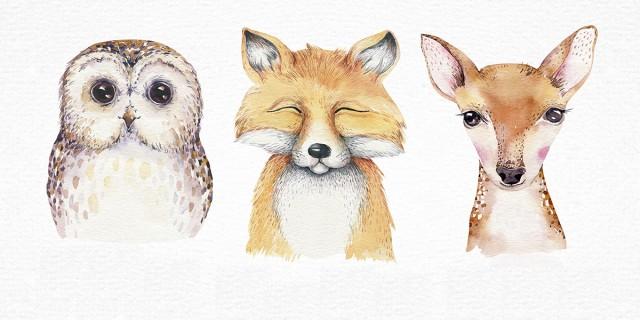 Image du test Quel animal de la forêt vous ressemble ?