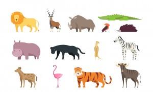 À quel animal ressemblez-vous le plus ?