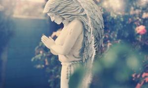 Quel sera le message de votre pierre tombale ?