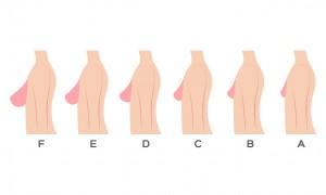Que révèle votre poitrine de vous ?