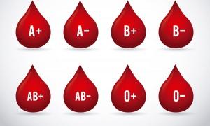 De quel groupe sanguin avez-vous la personnalité ?