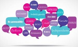 Quel adjectif vous définit le mieux ?