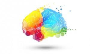 Quelle est votre forme d'intelligence ?