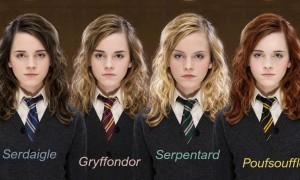 Harry Potter : De quelle maison magique êtes-vous ?