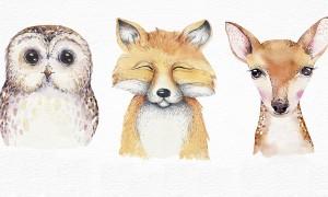 Quel animal de la forêt vous ressemble ?