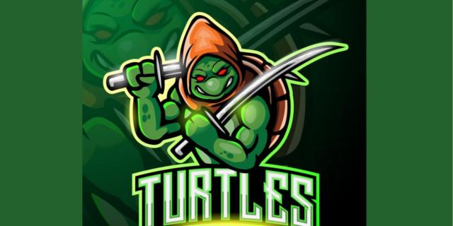 image du test quelle tortue ninja tes vous - Tortue Ninja